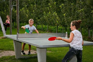 Children play table tennis
